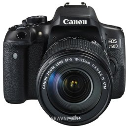 Цифровой фотоаппарат Canon EOS 750D Kit