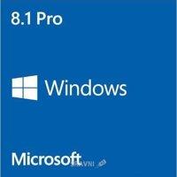 Microsoft Windows 8.1 Профессиональная 64 bit Русский (коробочная версия) OEM (FQC-06930)